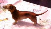 Royal Dux Dachshund